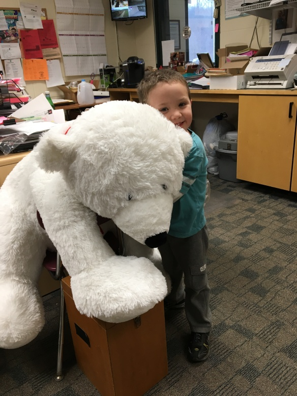 teddy-bear-raffle