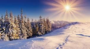 a frosty day1